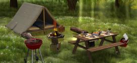 Camping_Picnic set Sherwood – 110 animations [mesh]